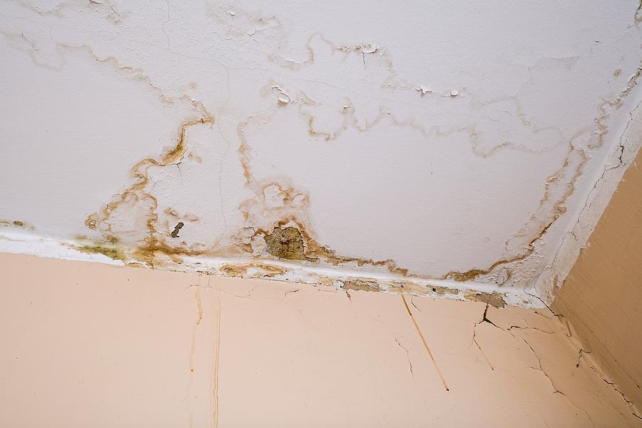 Mold Prevention