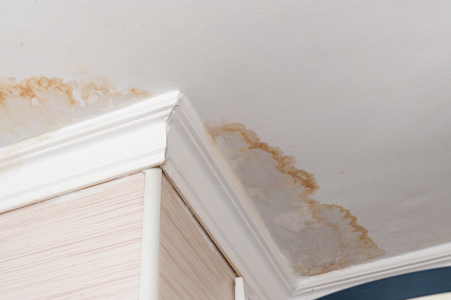 Home Maintenance To Protect Against Water Damage
